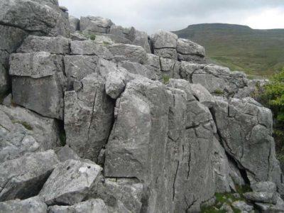The Great Scar Limestones