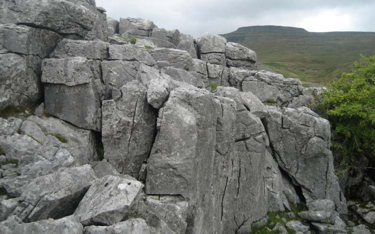 Great Scar Limestone below Ingleborough at Crina Bottom. Stephen Oldfield
