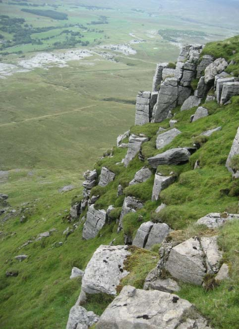 The Main Limestone layer forming part of the Yoredale Series a short distance below the summit of Ingleborough. Stephen Oldfield