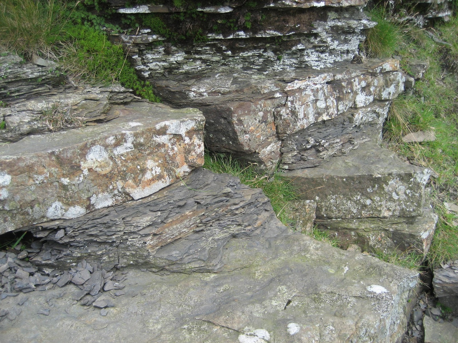 Sandstones and shales in the Yoredale Series formed by fluctuating sea levels. Stephen Oldfield