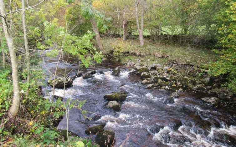 The River Twiss flows over the area of the Ingleton Coalfield close to the village centre. Stephen Oldfield