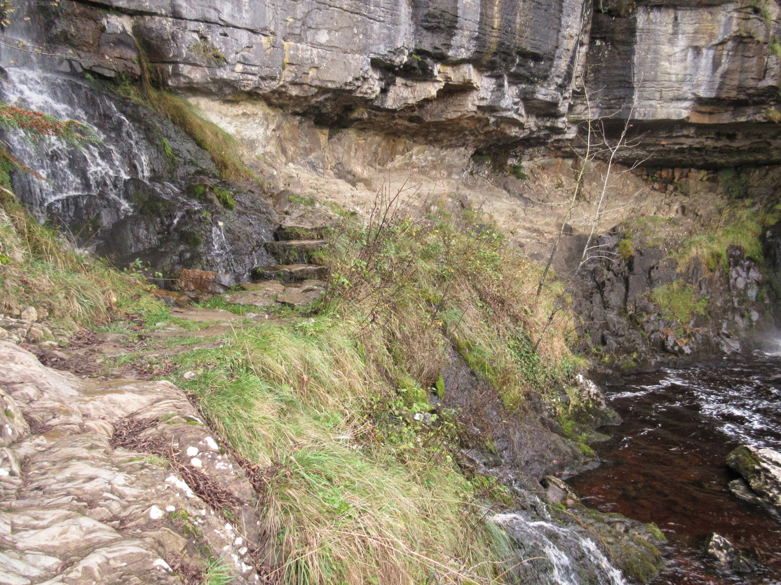 Vertically bedded Ingletonian rocks exposed beneath the unconformity at Thornton Force. Stephen Oldfield