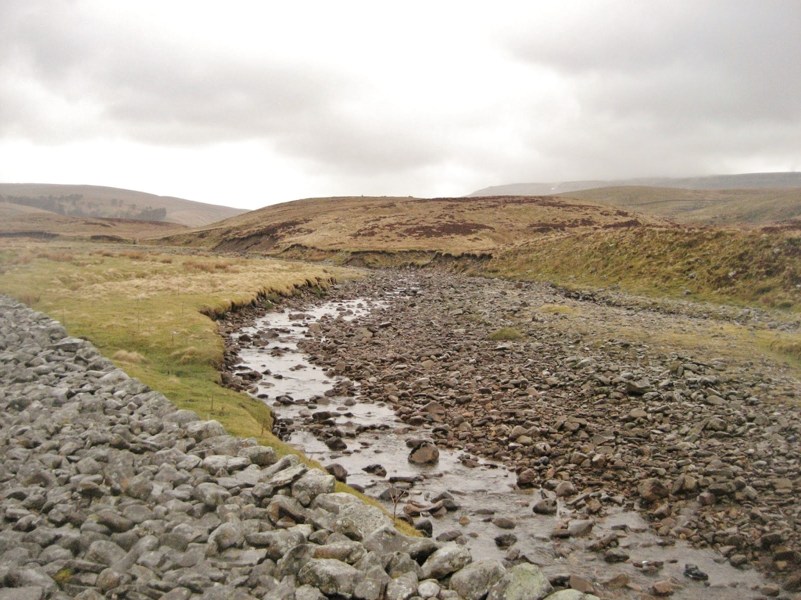 Moraine ridge at Brown Hills alongside Kingsdale Beck, just north of Yordas Cave. Stephen Oldfield