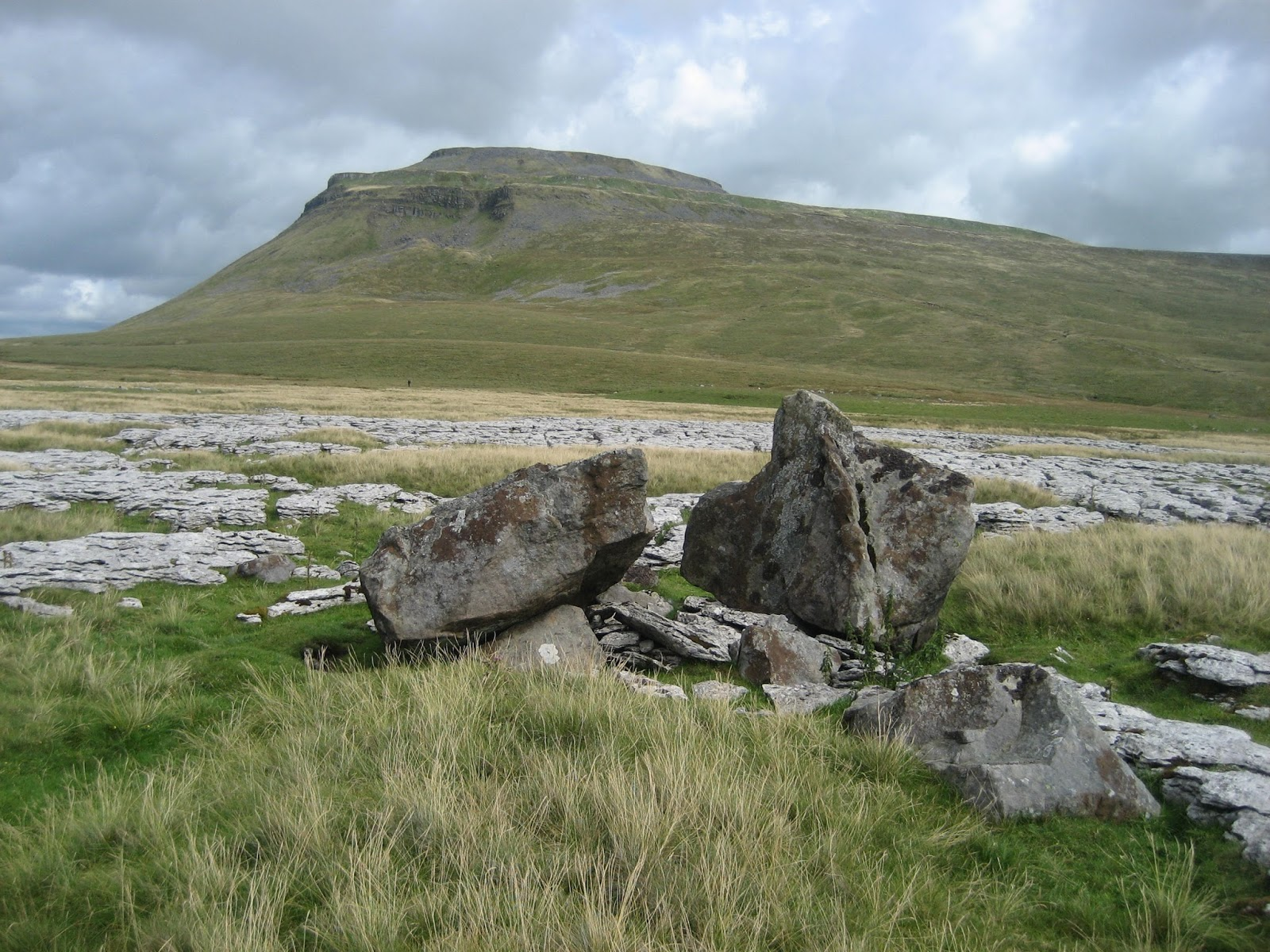 Erratic boulders of Grassington Grit above White Scars, on the west flank of Chapel-le-Dale. Stephen Oldfield