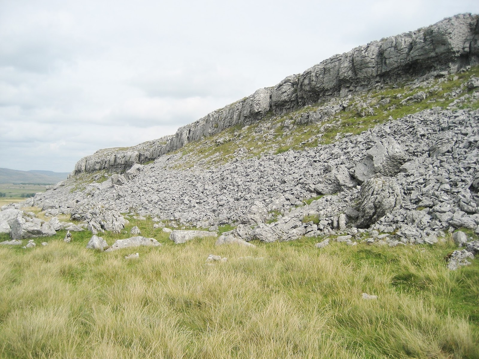 Classic scar of Gordale Limestone with scree apron within the Great Scar series on the east side of Chapel-le-Dale. Stephen Oldfield