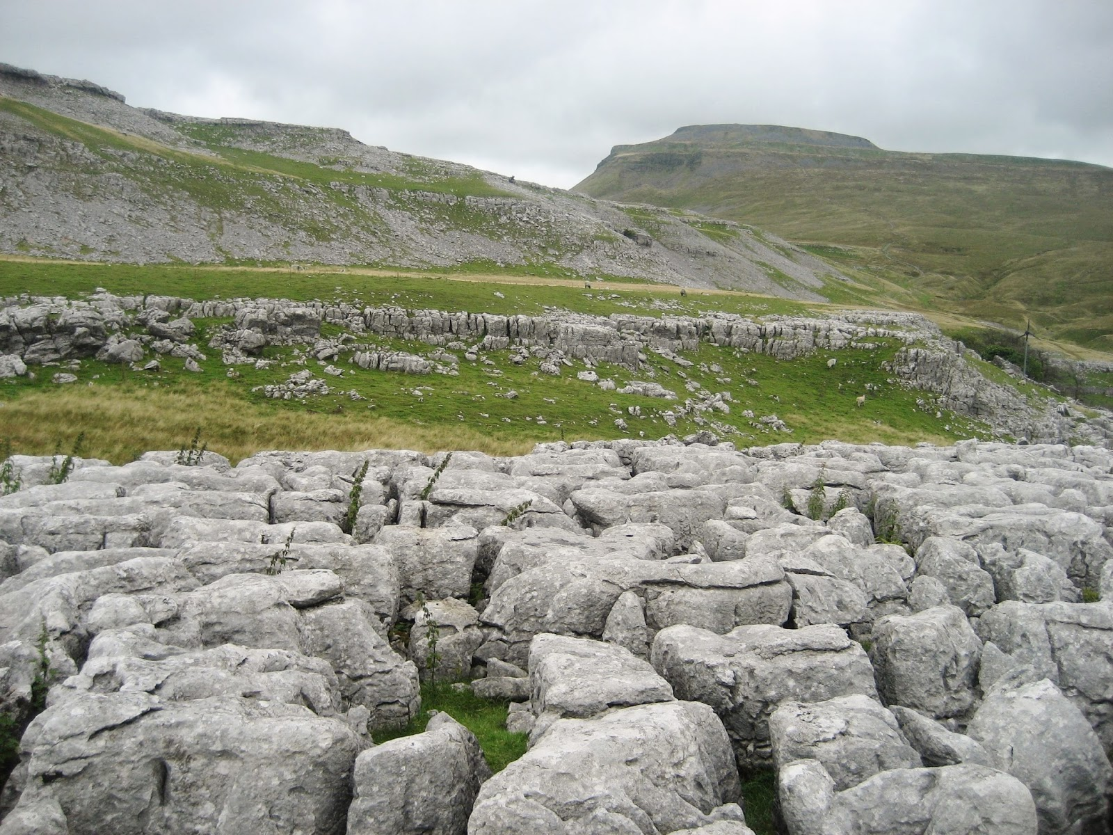 Gordale Limestones forming scars, screes and pavements at Crina Bottom. Stephen Oldfield