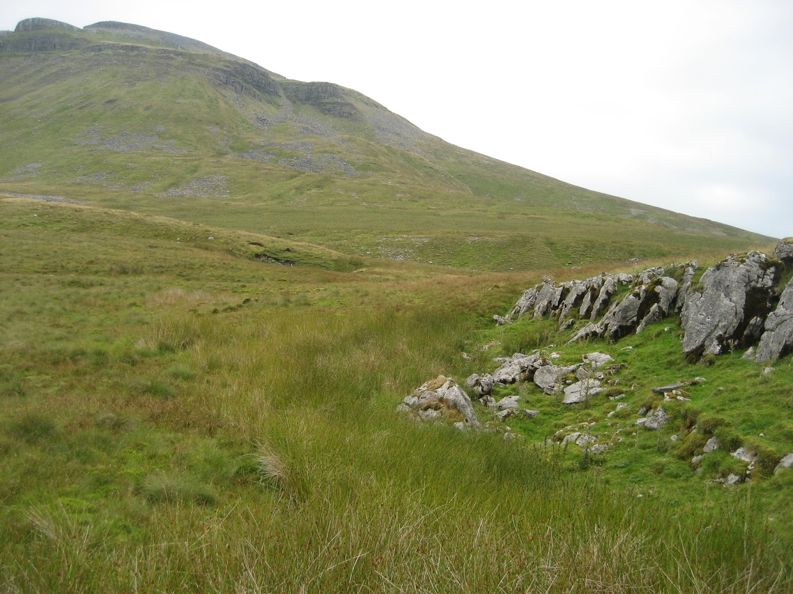 The Fault scarp of Green Edge with the benches clearly lowered on the left, and raised on the right. Stephen Oldfield
