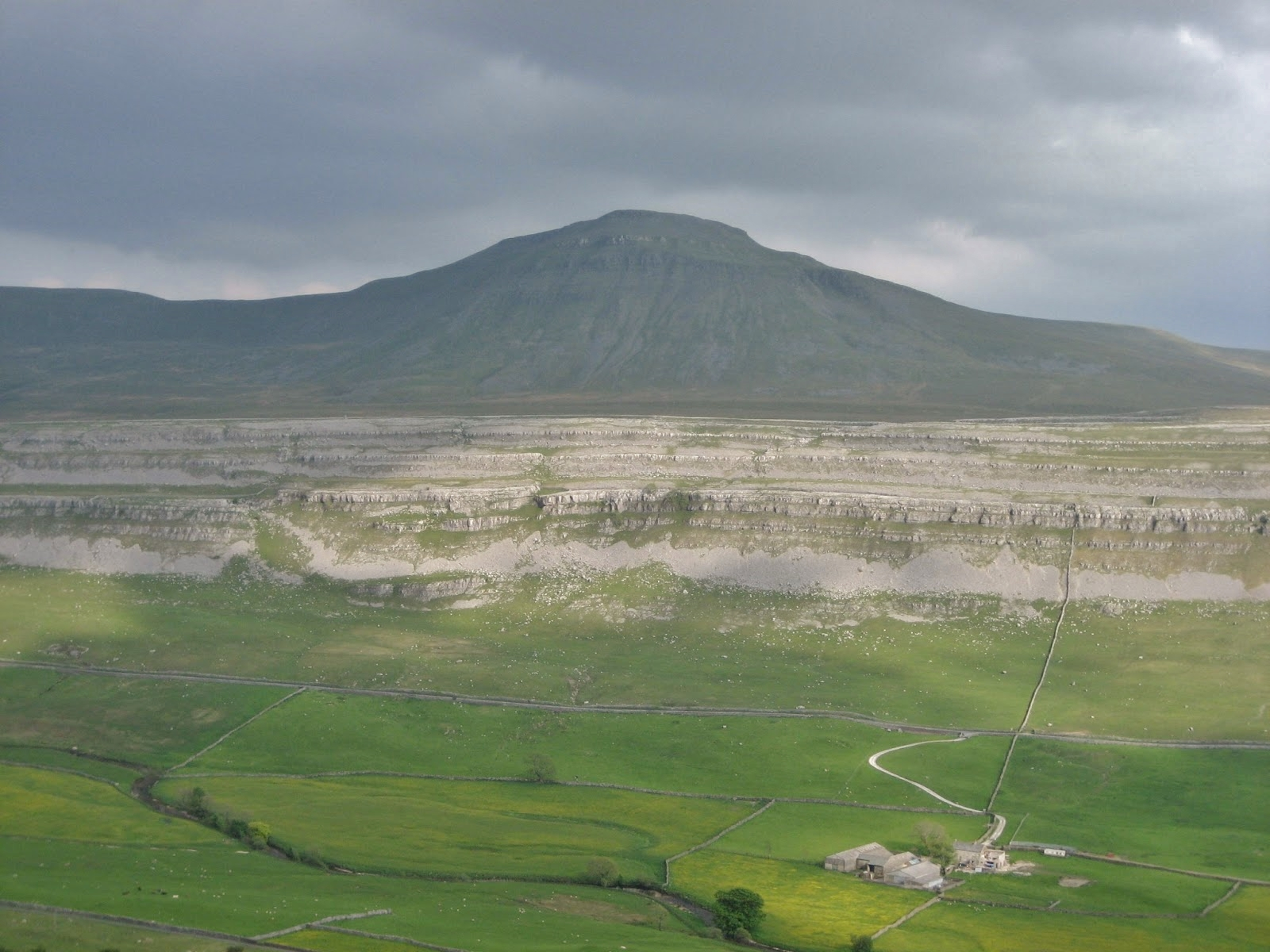 The Great Scar Limestone plateau of Ingleborough.  The main scree apron marks the division between the Cove and Gordale Limestones.  Much of the lower Cove Limestone is covered by glacial till, but a small cliff of it is clearly seen below the scree and just left of centre. Stephen Oldfield