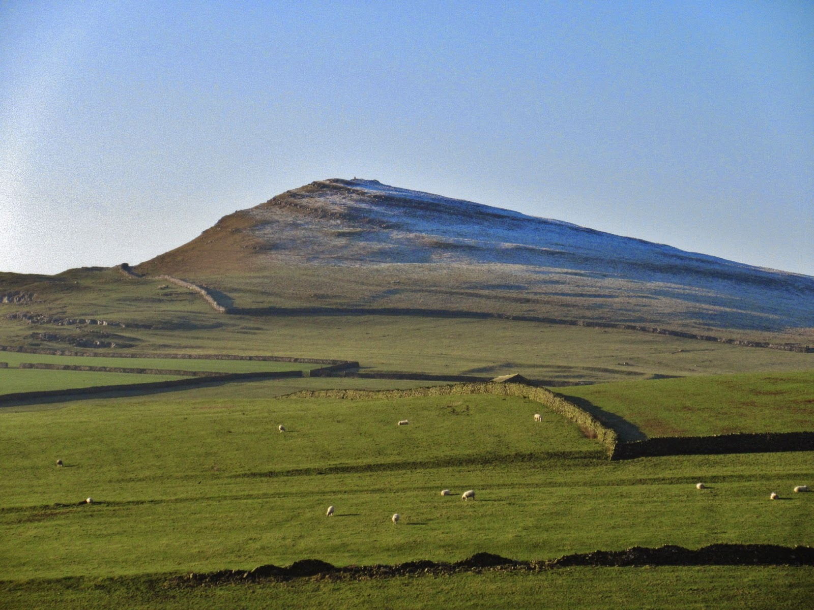 Smearsett Scar, made up of Cove and Gordale Limestone – and marking the termination of the Feizor Fault as it meets Ribblesdale. Stephen Oldfield
