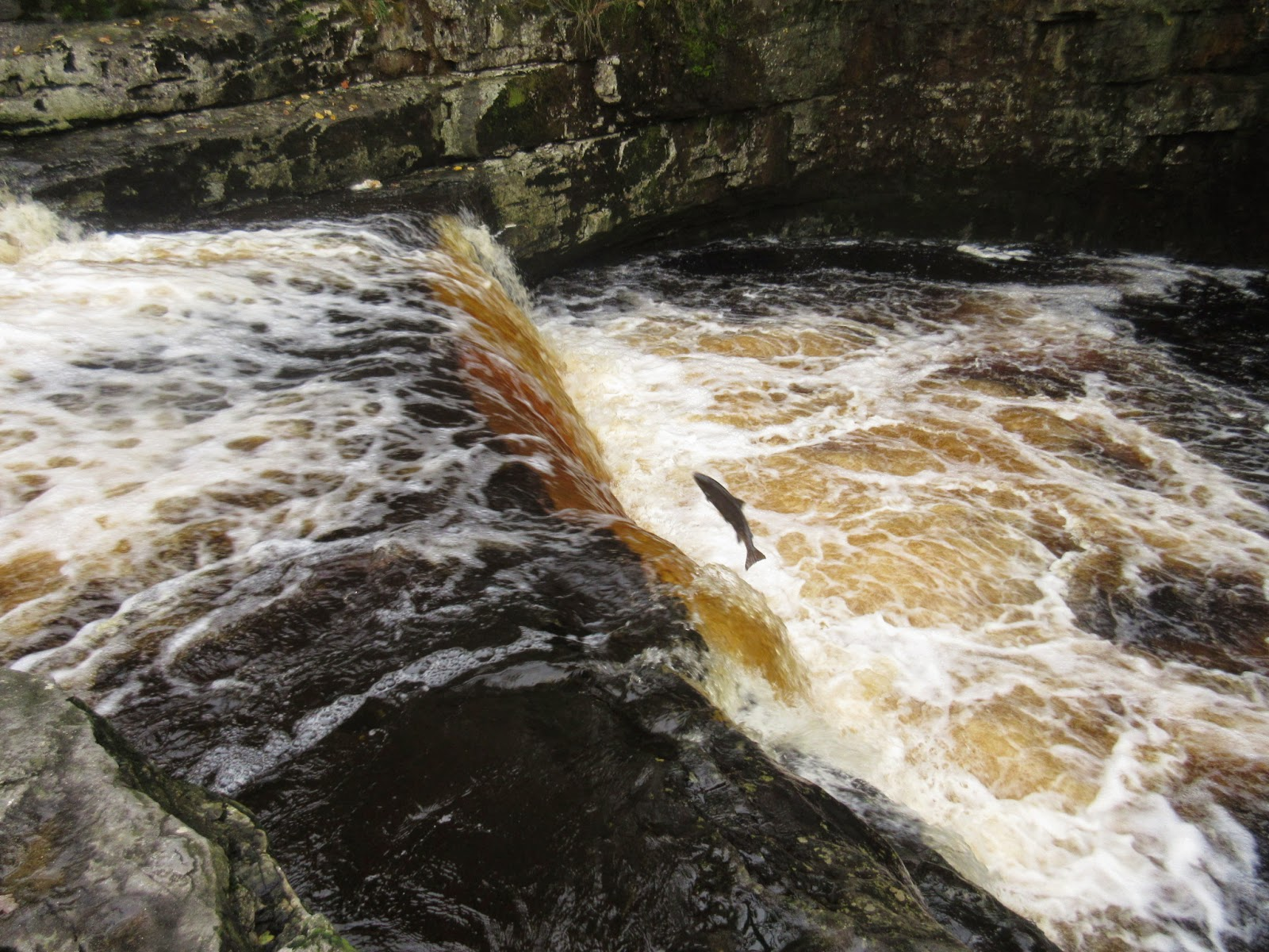 Stainforth Force – on the River Ribble north of Settle. Stephen Oldfield