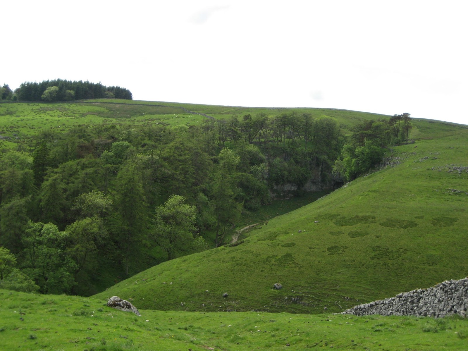 Meltwater channels converge below Trow Gill, where the route through the gorge was met by flow from Clapham Bottoms to the north east, well seen to the left of the wall. Stephen Oldfield