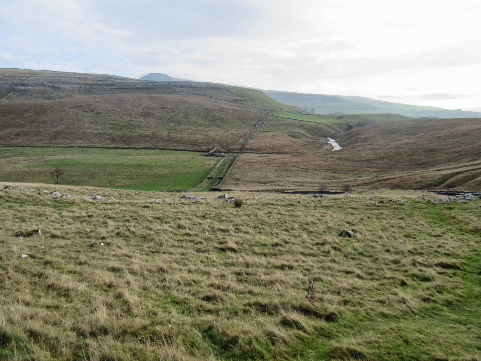 Looking south along Kingsdale to the beck breaking through the great moraine barrier of Raven Ray, which once held back a small lake.  The lateral moraine of Wackenburgh Hill can be seen on the left. Stephen Oldfield