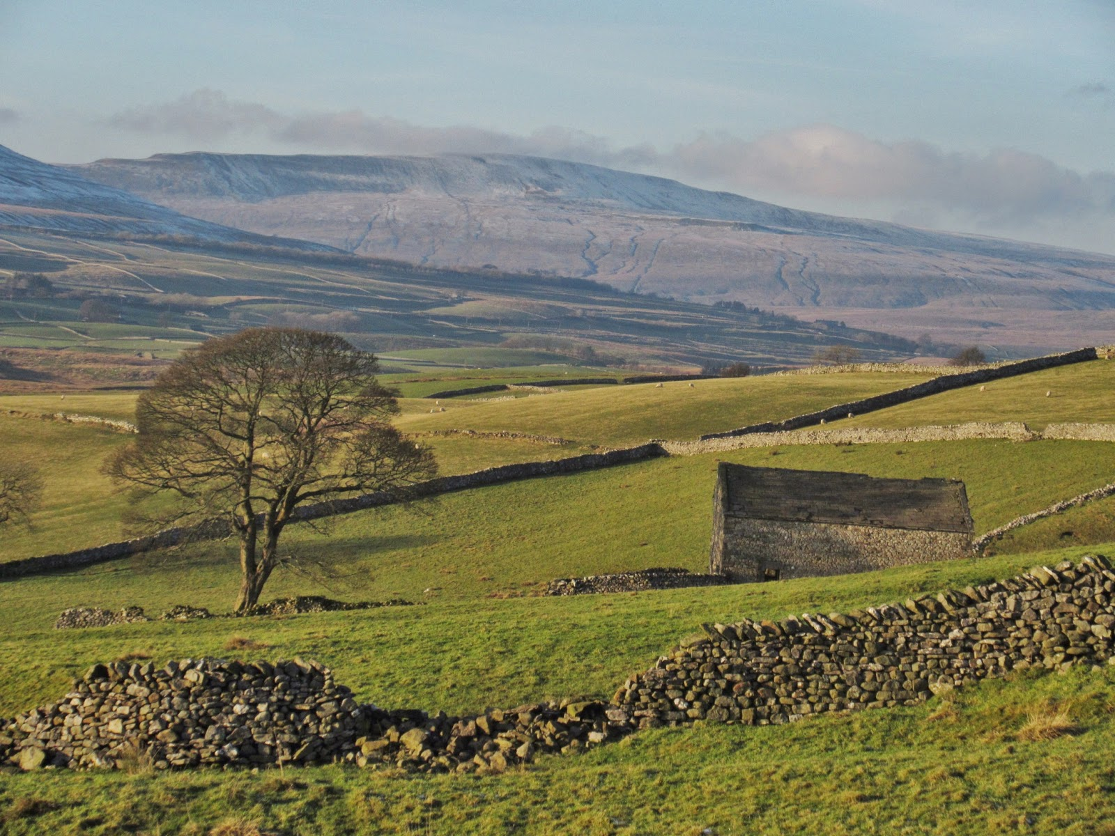 Whernside at the head of Ribblesdale.  The main ice flow moved from Ribblehead, just beneath it and moved from right to left across the photograph. Stephen Oldfield