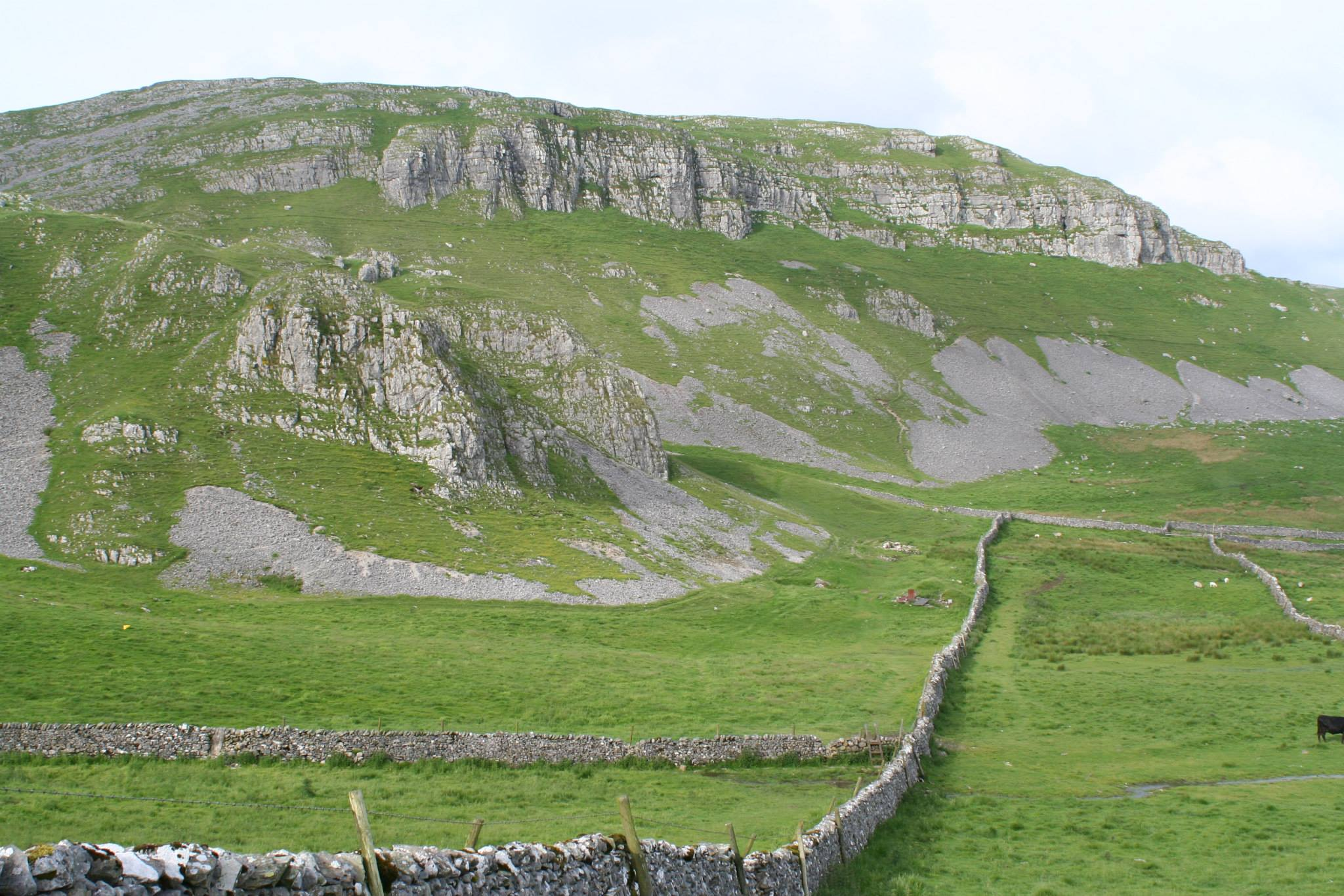 Attermire Scar, a great cliff eroded back from the line of the Mid Craven Fault, and left exposed by comparatively recent removal of shale cover, giving it a fresh appearance. Stephen Oldfield