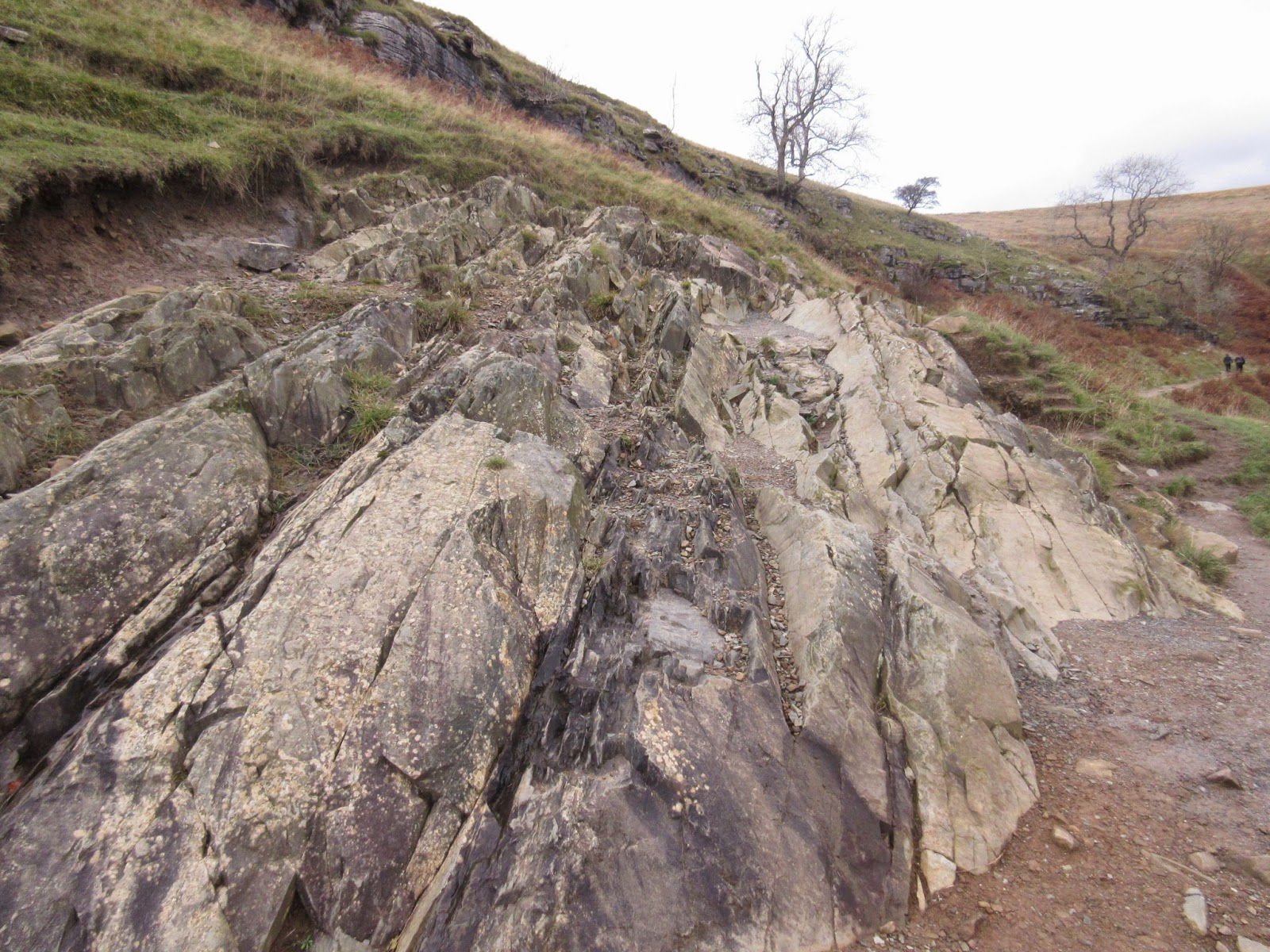 Buckling of the Ordovician rocks near Thornton Force. Stephen Oldfield