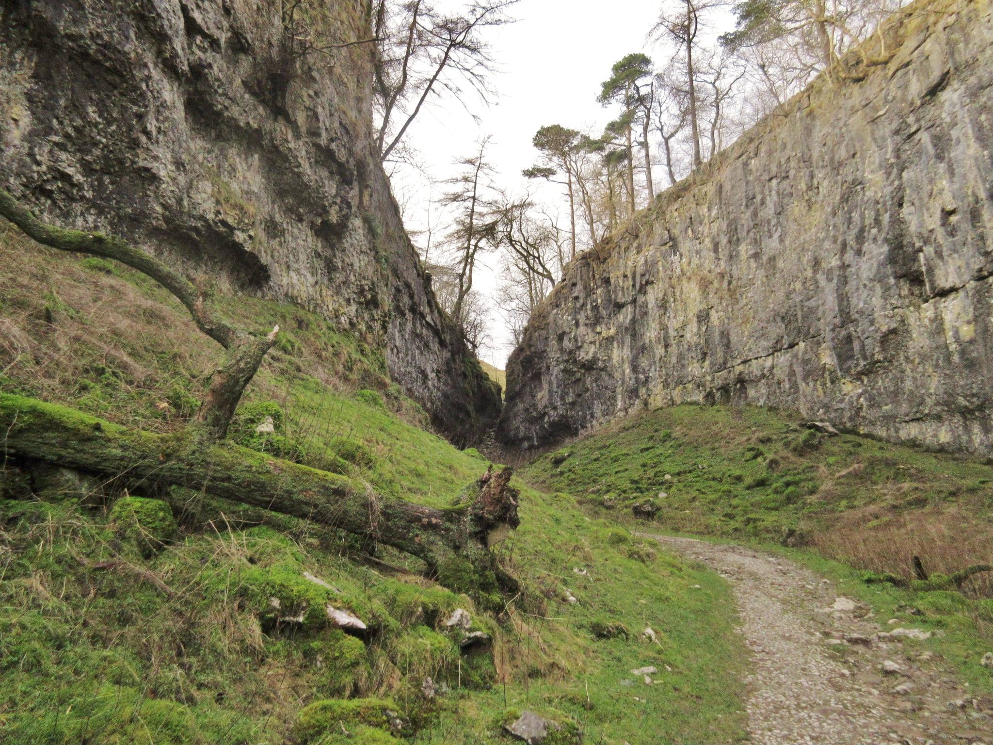 Inside Trow Gill, with the narrowing walls of limestone meeting the abandoned waterfall. Stephen Oldfield
