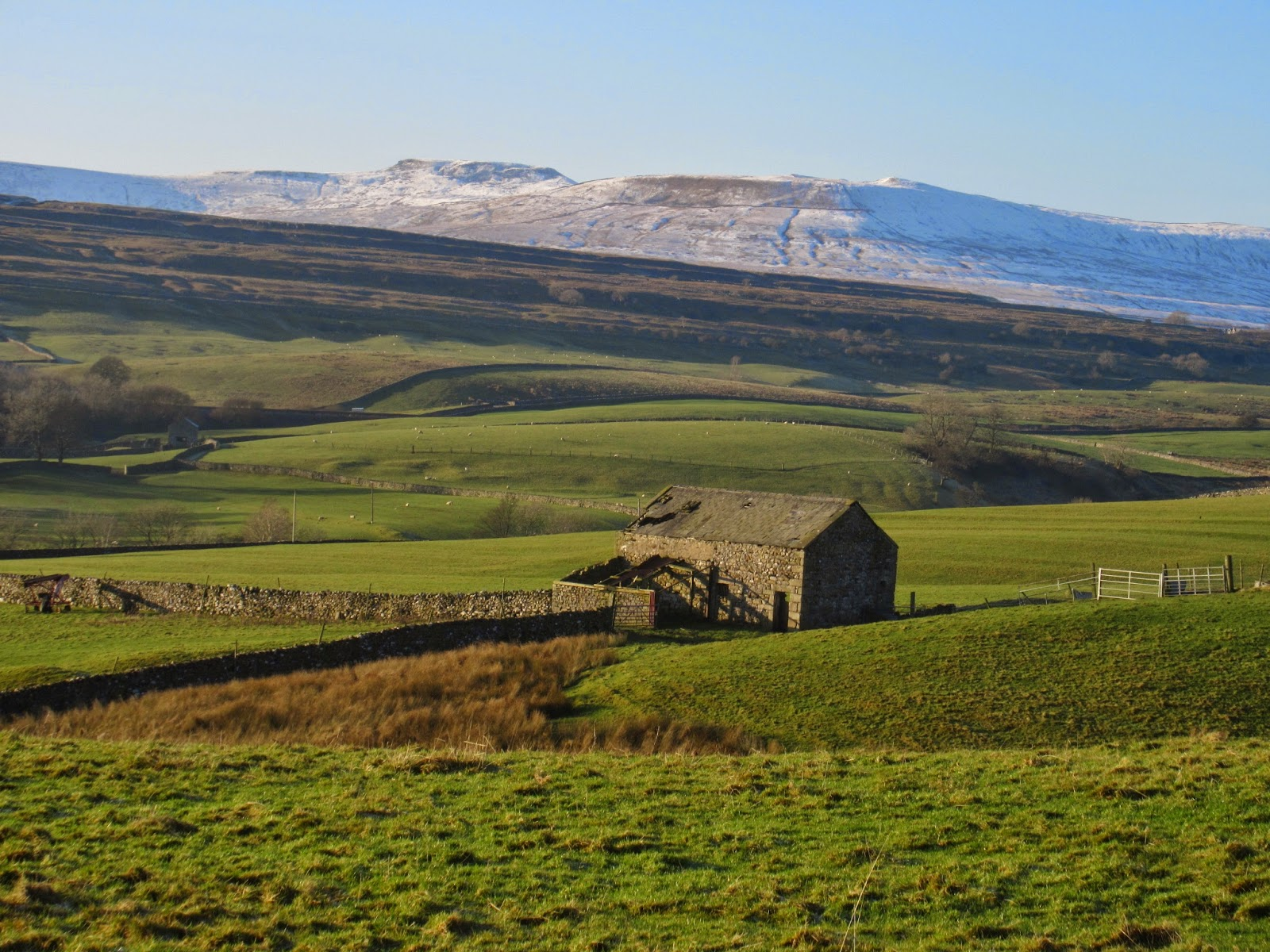Ribblesdale from the east.  During the Devensian the summit of Ingleborough will have stood clear of the ice as a nunatak, with the massif influencing ice to diverge down the dales either side. Stephen Oldfield