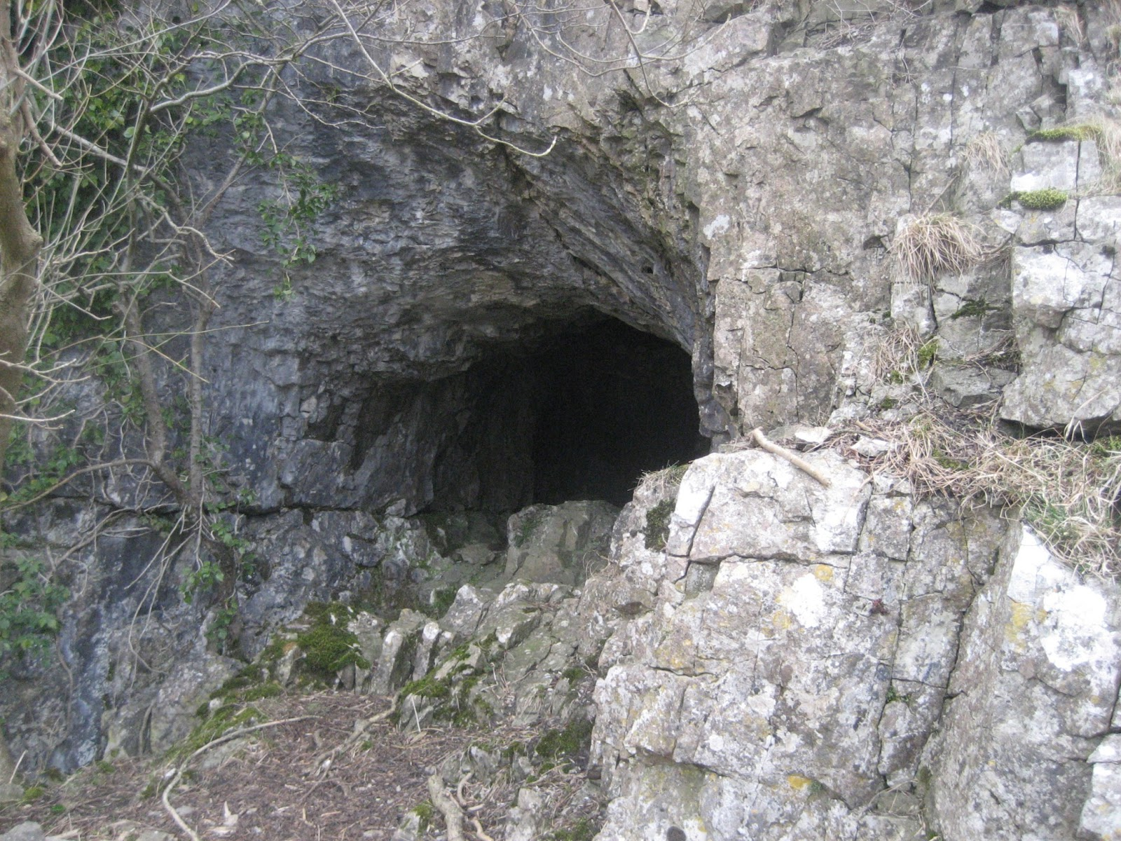 Entrance to the partly mined Buckhaw Brow Caves. Stephen Oldfield