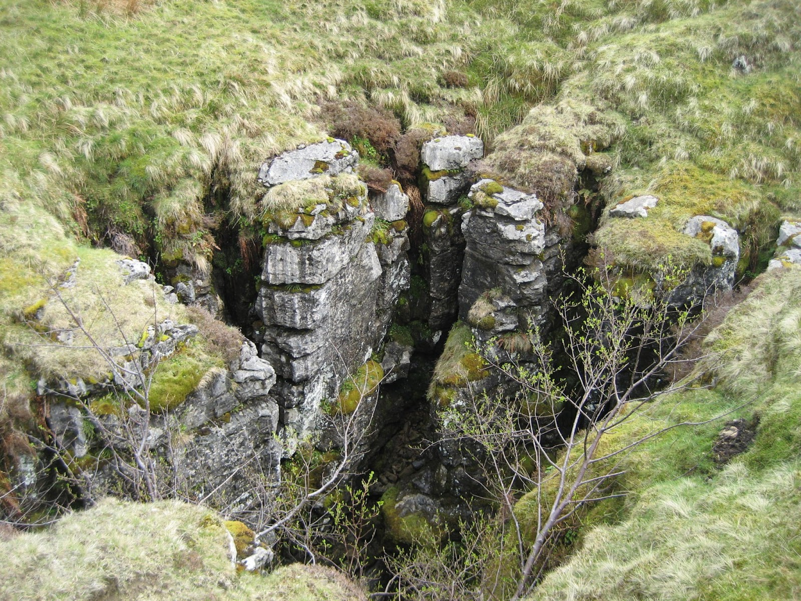 The beautiful shaft of the Fluted Hole – or the Fairy's Throne, which swallows a small stream on its way to Moses Well in Clapdale. Stephen Oldfield