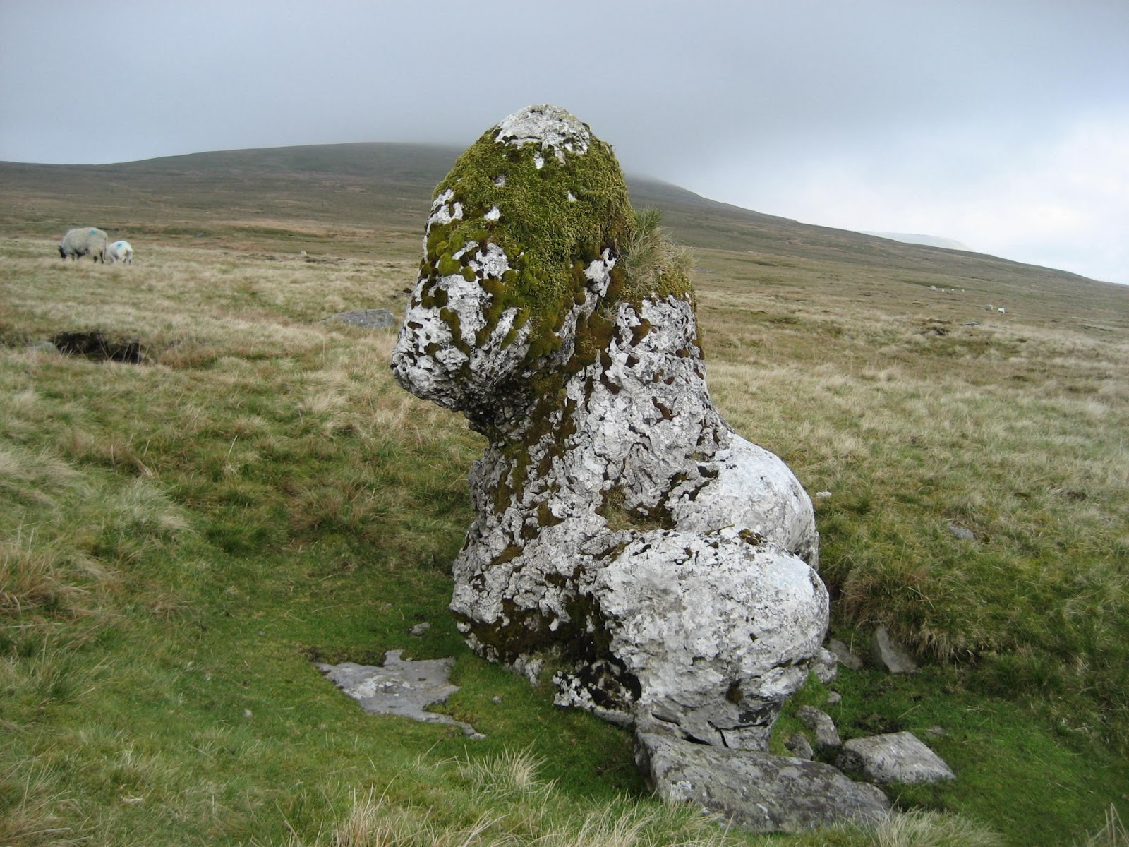 Harry Horse Stone – a boulder deposited on the drift of Newby Moss by a retreating ice sheet. Stephen Oldfield