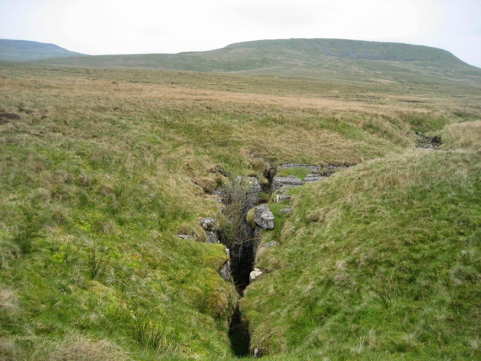 The stream running from the Yordedale slopes of Simon Fell meets a fault in the Great Scar Limestone to guide it in spectacular fashion down Juniper Gulf. Stephen Oldfield