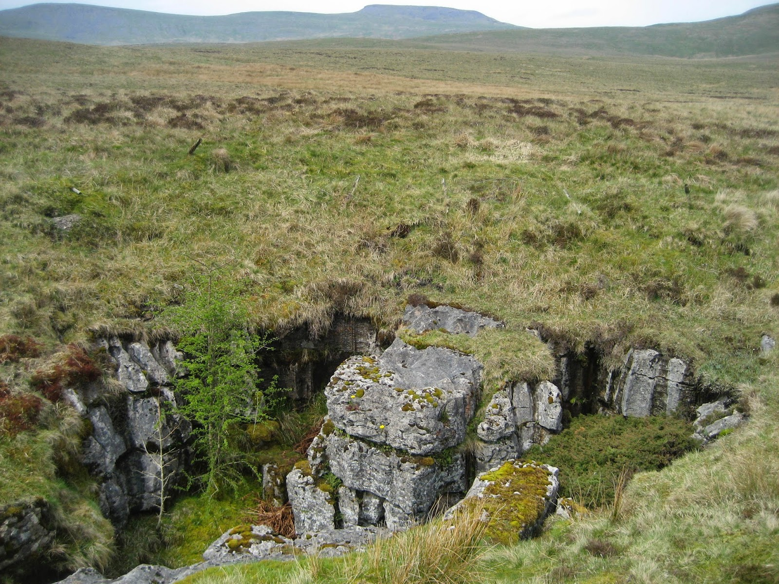 Oasis in a drab wilderness: the attractive ancient shaft of Little Juniper, with Simon Fell, a satellite of Ingleborough, behind. Stephen Oldfield