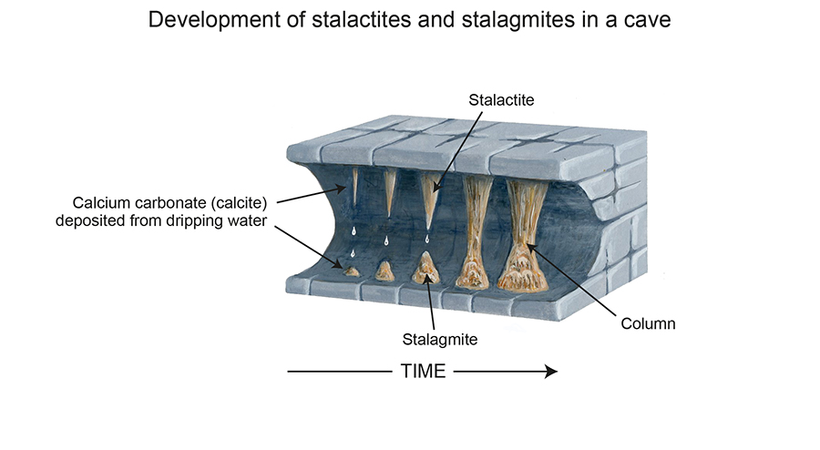 The formation of stalactites and stalagmites. Elizabeth Pickett