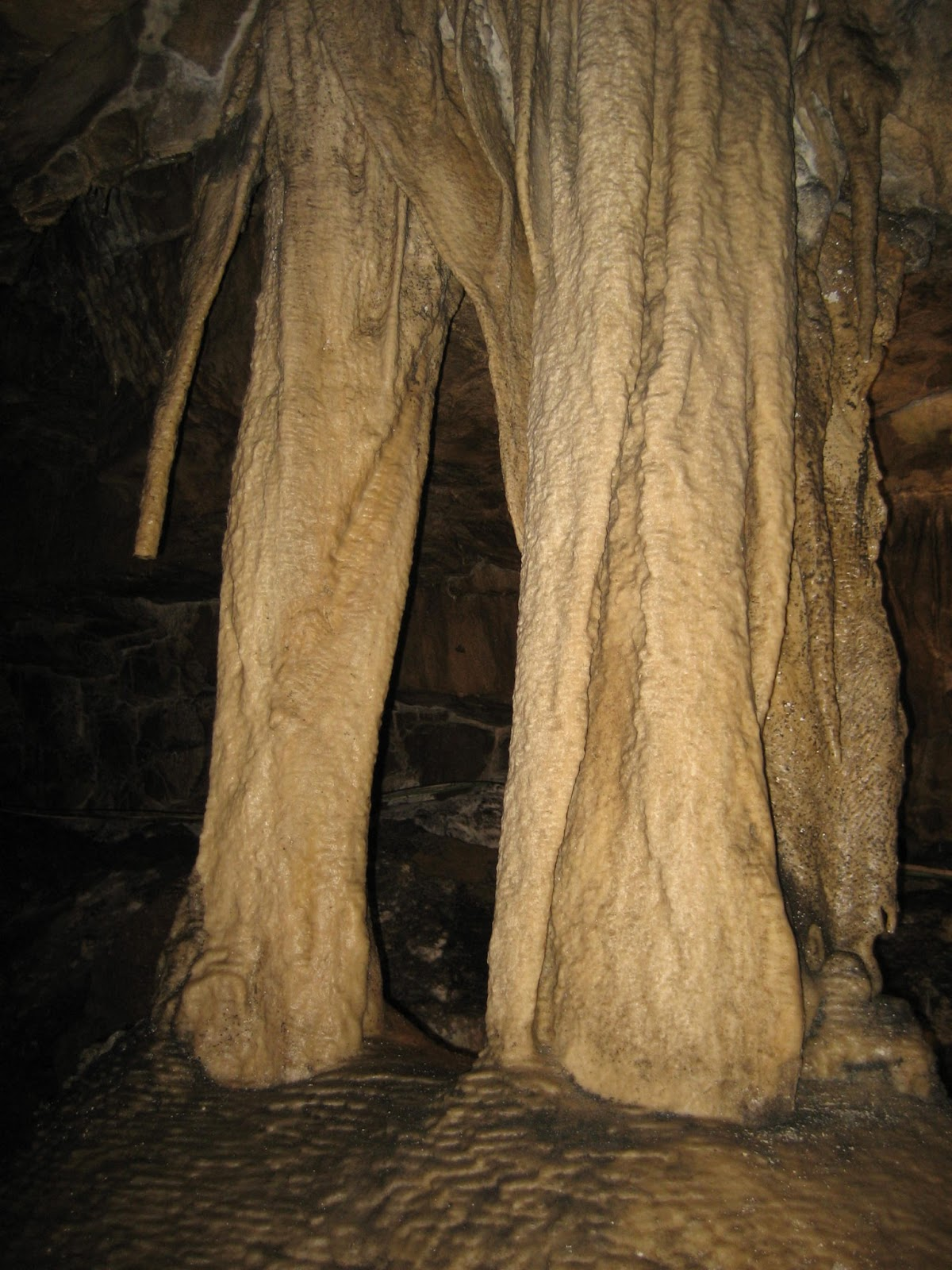 The Elephant's Legs, Ingleborough Cave. Stephen Oldfield