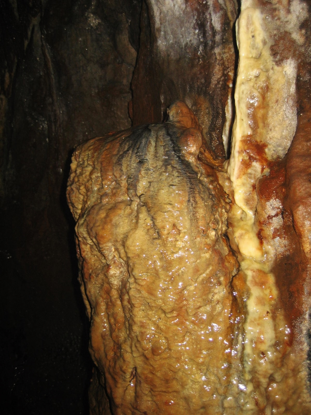 Katnot Cave has a wealth of flowstone formations – including the Katnot squirrel. Stephen Oldfield