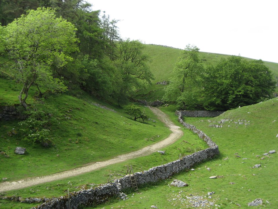 The meltwater valley of Clapdale, just before the entrance to Trow Gill.  Foxholes lies in a small valley just off the extreme left of the picture. Stephen Oldfield