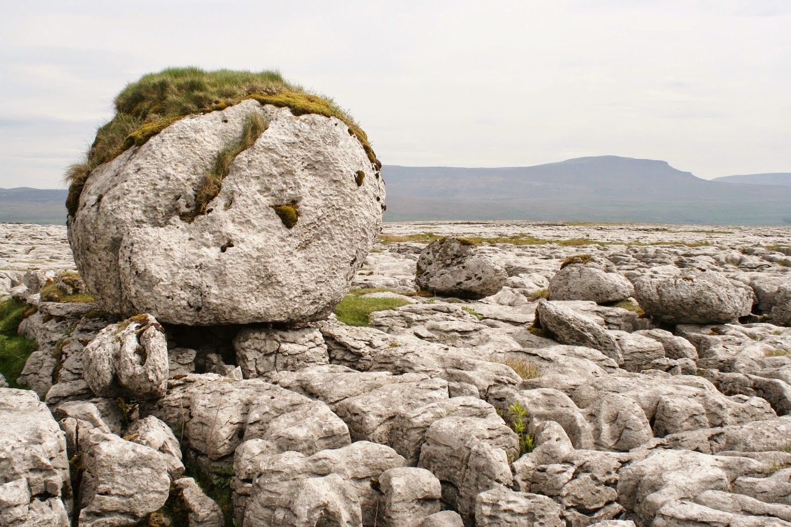 Glacially deposited limestone boulders on the pavements of Sulber Nick. Stephen Oldfield