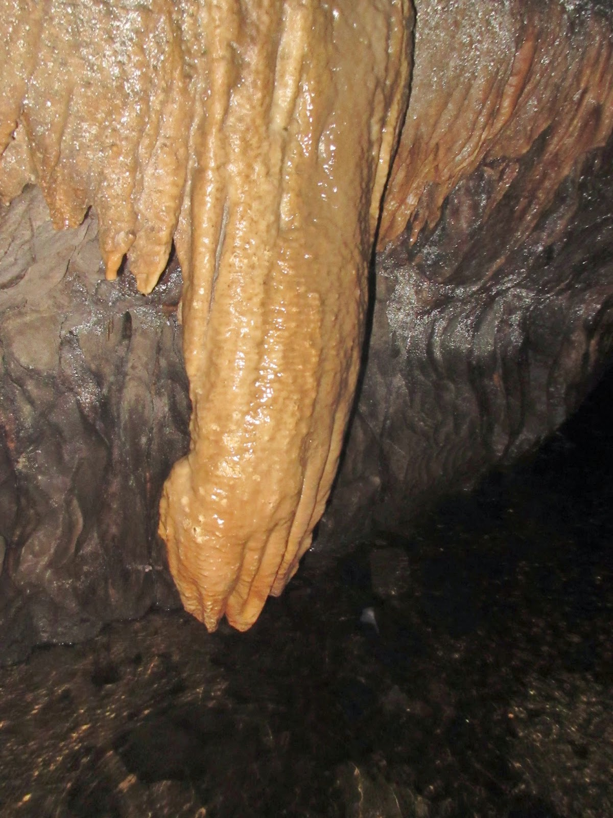The 'Giant's Hand': a bizarre flowstone formation in the upper reaches of the cave. Stephen Oldfield