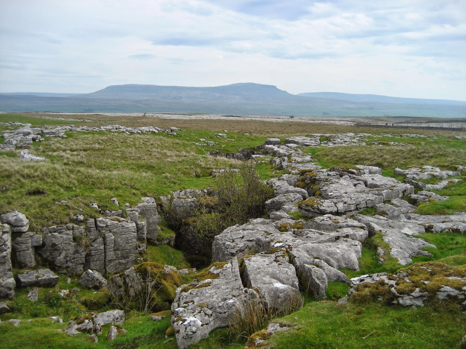 The entrance to Nick Pot, looking east towards Pen-y-ghent.  The unspectacular nature of the entrance belies one of the toughest and most spectacular systems on Ingleborough, with masses of unstable fault breccia and huge underground drops. Stephen Oldfield
