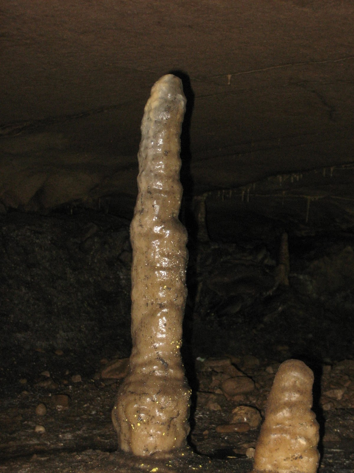 Stalagmites in the appropriately named Skittle Alley. Stephen Oldfield