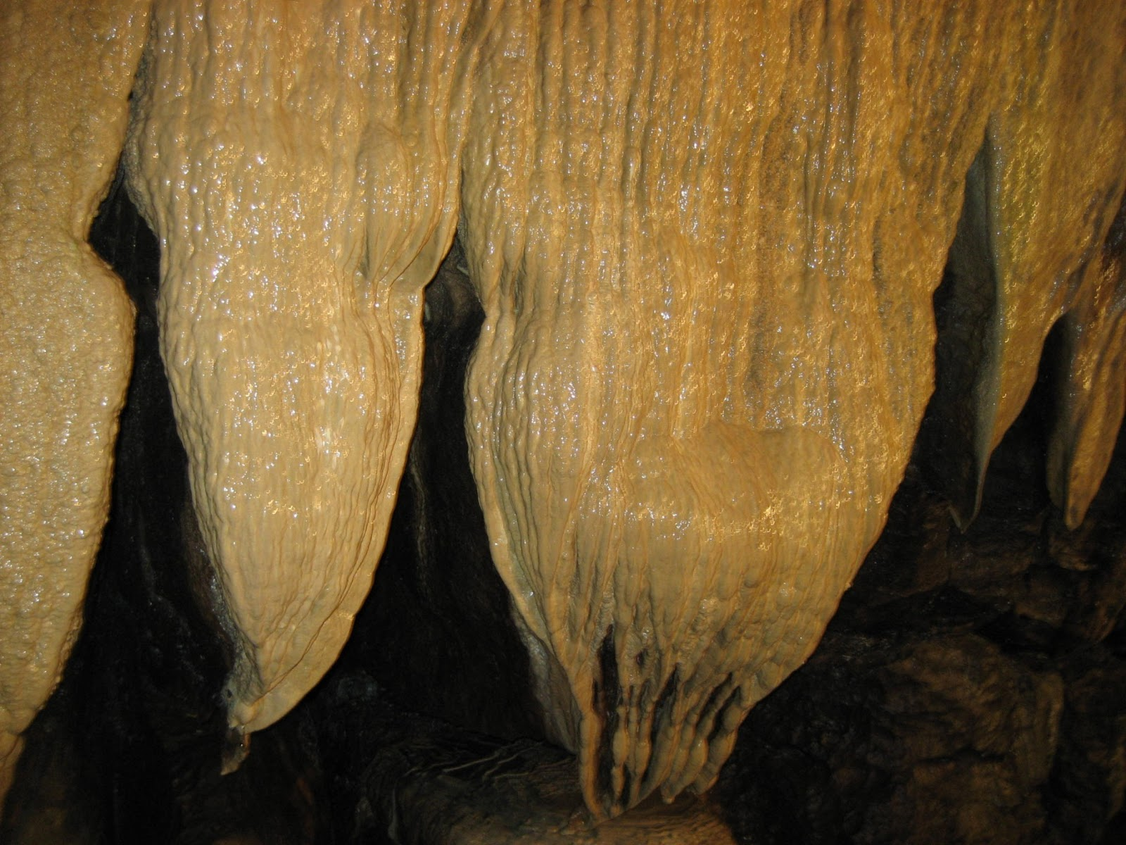 The Curtain range in Ingleborough Cave. Stephen Oldfield